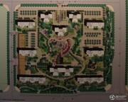 国惠村规划图
