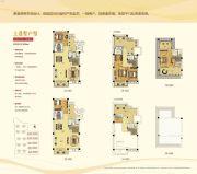 碧桂园御湖城4室2厅4卫120平方米户型图