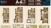 金辉城江城著4室3厅2卫308平方米户型图