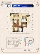 邦泰・国际社区(北区)3室2厅2卫100--112平方米户型图