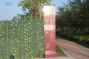 横琴紫檀文化中心实景图