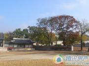 楠木新村外景图