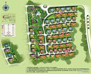 碧桂园假日半岛规划图