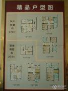 华德・天赐园 别墅270--370平方米户型图
