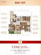 碧桂园・太阳城5室2厅3卫260平方米户型图