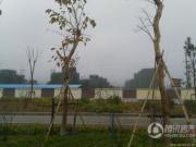珠光云岭湖外景图