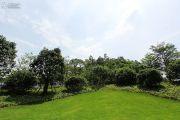 珠江�|境实景图