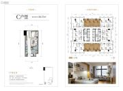 财信北岸铂寓1室1厅1卫50平方米户型图
