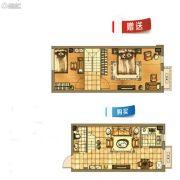碧桂园银亿・大城印象1室1厅1卫47平方米户型图