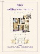 碧桂园太阳城3室2厅2卫119平方米户型图