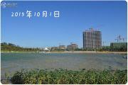 淄博绿城・百合花园外景图