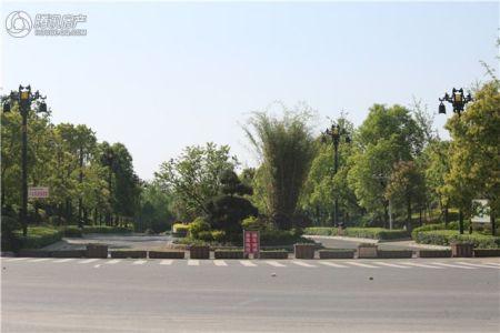 公园1978
