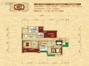 光瑞江都华宸二期2室2厅2卫102平方米户型图