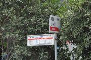 海棠花苑交通图
