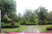 紫园实景图