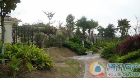 兴业海逸半岛花园实景图