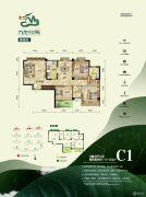 天翼・九龙印象3室2厅2卫117平方米户型图