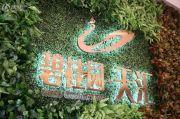 碧桂园・天汇实景图