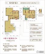 远辰・金湾蓝岸5室2厅4卫220--227平方米户型图