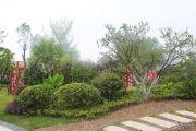汉安天地实景图