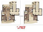 琥珀公馆6室2厅3卫237平方米户型图
