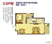 云投中心1室1厅1卫59平方米户型图