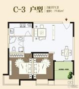 九龙城2室2厅1卫77平方米户型图