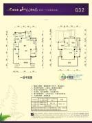 碧桂园山水桃园172平方米户型图