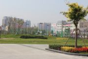 虹京国际实景图
