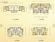 碧桂园・翡翠山282--284平方米户型图