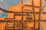 新湖明珠城规划图