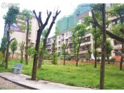 联科龙园实景图
