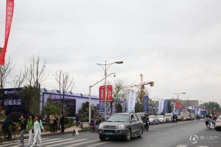 中旅紫蝶苑
