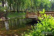 保利溪湖林语实景图