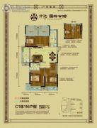 万达华府3室2厅1卫116--117平方米户型图