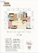 大川滨水城2室2厅0卫66平方米户型图