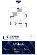 城中央2室2厅2卫101平方米户型图