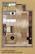 中鼎・君和名城1室0厅1卫62平方米户型图