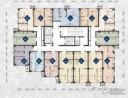 唐轩城市广场35--55平方米户型图