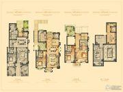 佘山一品5室2厅3卫0平方米户型图