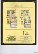紫金城5室2厅2卫236平方米户型图
