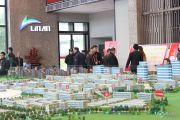林安国际商贸物流城实景图