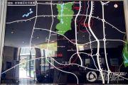 国电金海域规划图