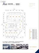 高盛创富中心913平方米户型图
