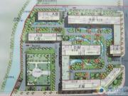 碧华园规划图