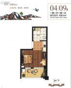 雁鸣湖畔1室1厅1卫41平方米户型图