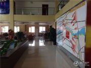 中国供销东北商贸城实景图
