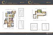国贸仁皇4室2厅2卫155平方米户型图