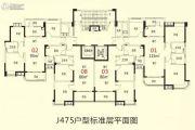 徐州碧桂园0平方米户型图