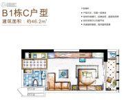 保利国际广场2室1厅1卫46平方米户型图